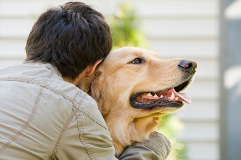 L'implication d'un chien dans des faits d'abus sexuels crée une situation inédite au Canada (illustration)