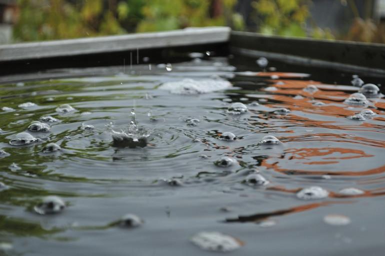 De l'eau de pluie (illustration)