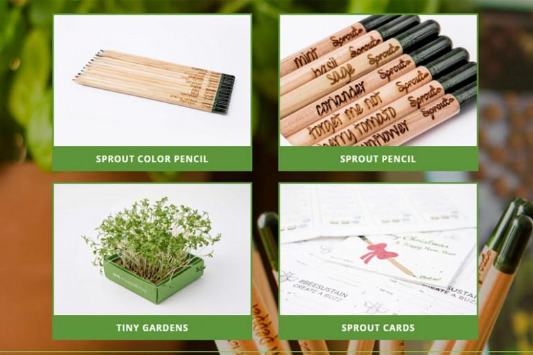 """Plantez le crayon """"Sprout"""" pour faire pousser vos plantes"""