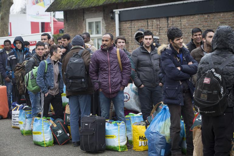 Des réfugiés font la queue à leur arrivée au centre de Droomgaard à Kaatsheuvel au Pays-Bas le 6 janvier 2016