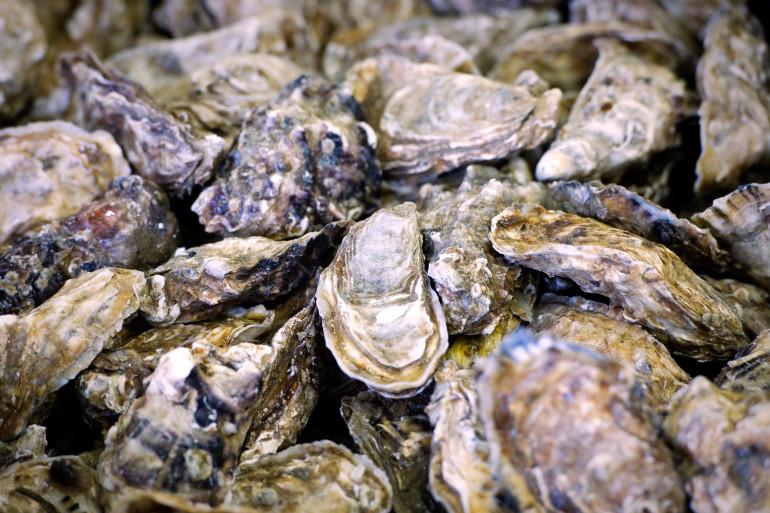 Des huîtres de France