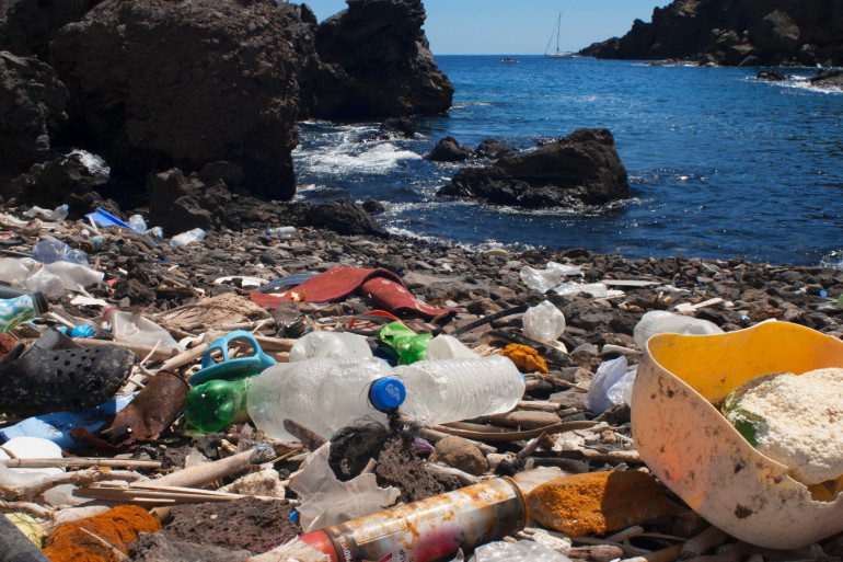 Des déchets en plastique charriés par les eaux qui jalonnent une plage.