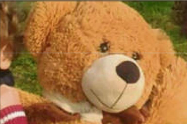 Octave, l'ours mascotte d'une classe de maternelle