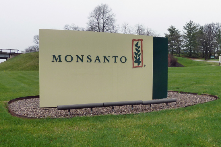 Rachat de Monsanto par Bayer : la fin de la firme aux OGM ?