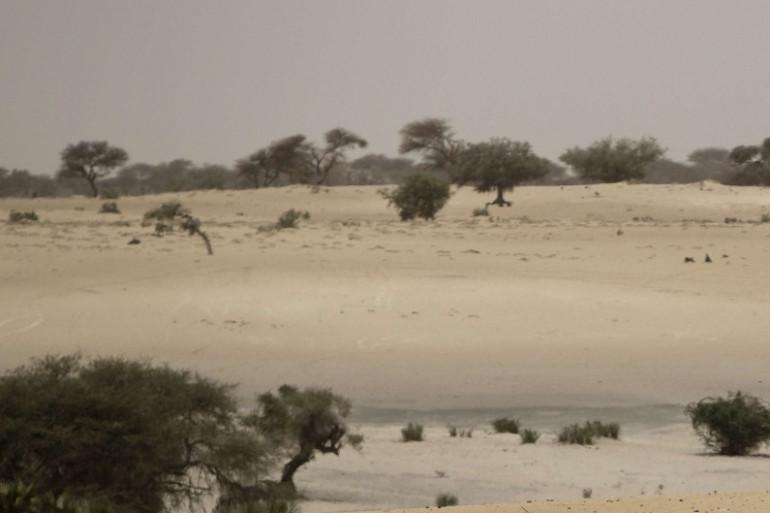 Le désert, dans le Sahel