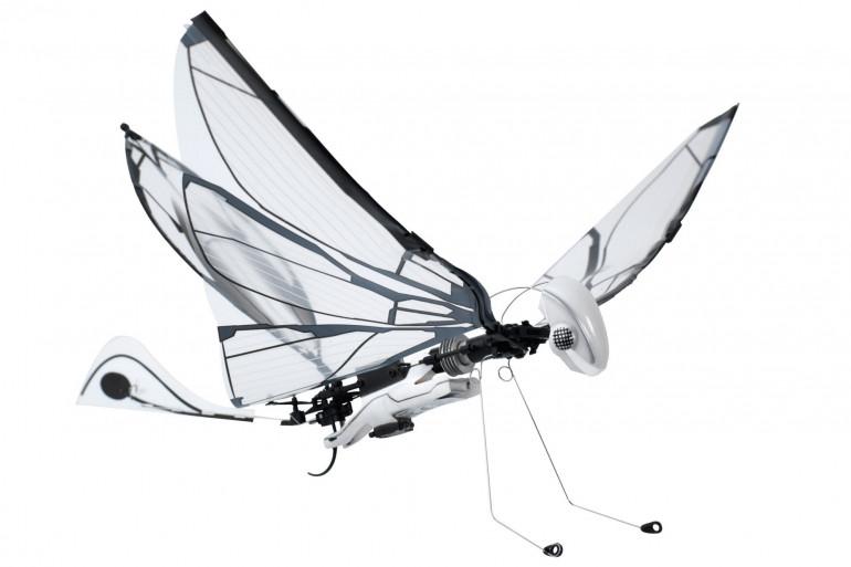 Metafly le papillon robot