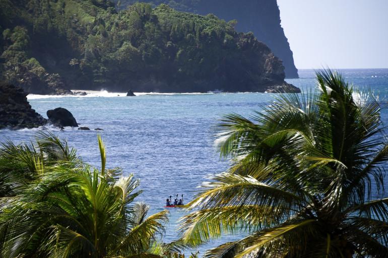 La Martinique ne compte pas de cas de coronavirus sur son sol
