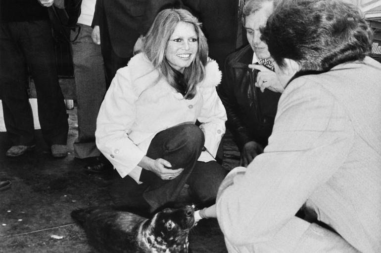 Brigitte Bardot pose avec un bébé phoque au Canada en 1976