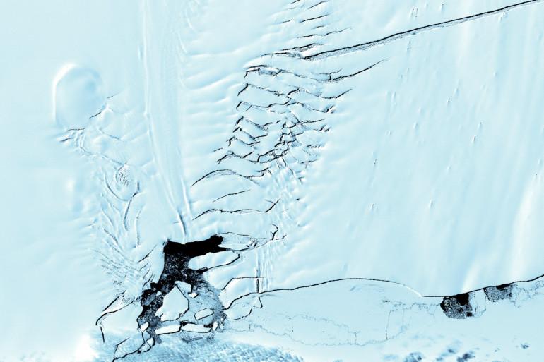 Le glacier de l'île du Pin, où les scientifiques de l'université de Northumbria ont découvert des sédiments contenant des restes de plantes vieux de 90 millions d'années.