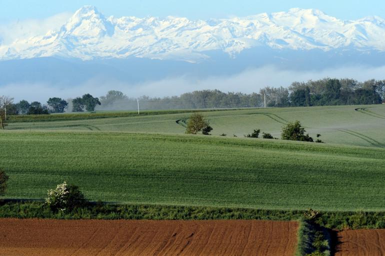Une campagne française avec les Pyrénées au loin, dans le Lauragais.