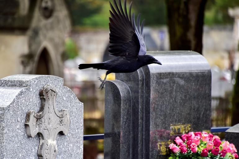 Des tombes dans un cimetière (illustration)