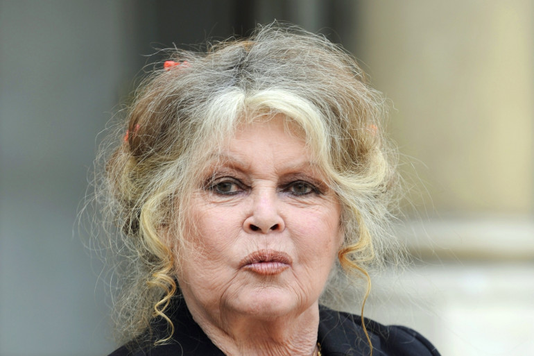 Brigitte Bardot à l'Élysée en 2007 (illustration)