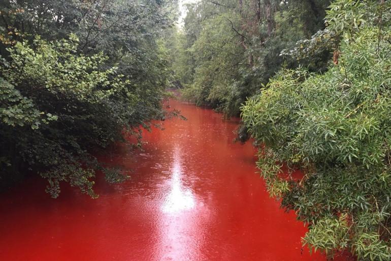 Le fleuve a été totalement coloré en rouge pour effectuer des recherches