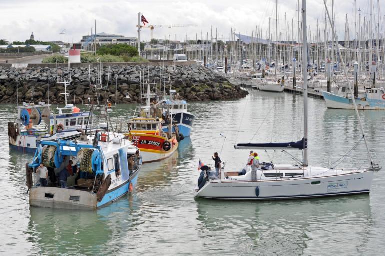 Des bateaux de pêche, dans le port de La Rochelle