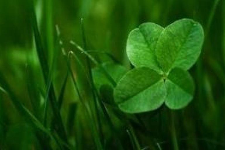 Le trèfle à quatre feuilles, un autre symbole synonyme de chance.
