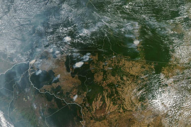 Les incendies en Amazonie (illustration)