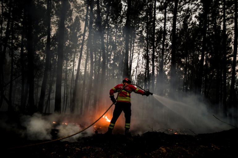 Un pompier en train d'éteindre un feu de forêt (illustration)