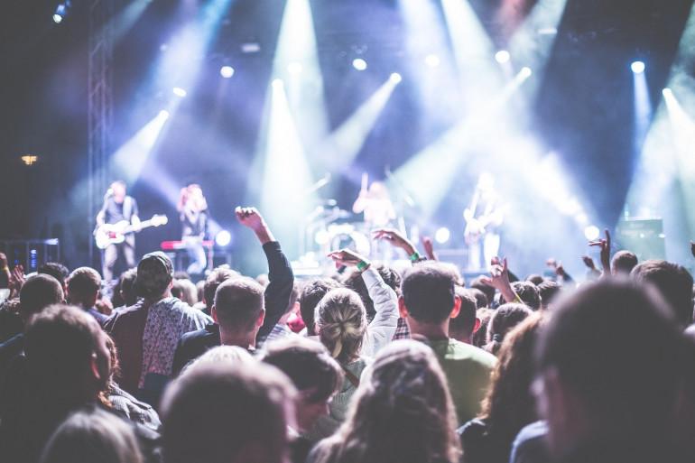 Un public lors d'un concert (Image d'illustration).