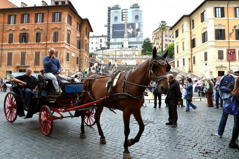 Un cheval tractant une calèche à Rome