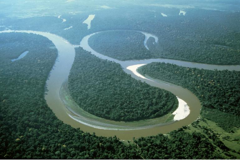 Vue aérienne de l'Amazonie (Illustration)