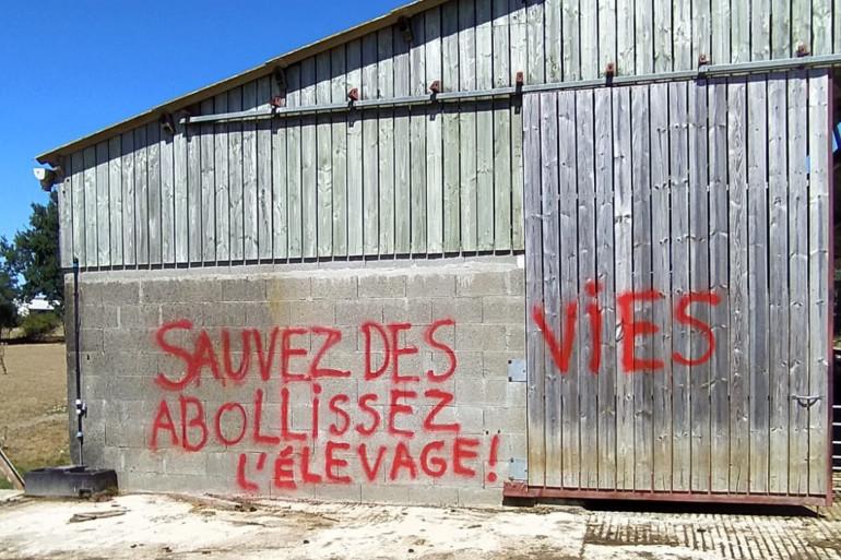 L'un des tags retrouvés sur l'exploitation d'Alexis, éleveur de chèvres et de canards près de Nantes.