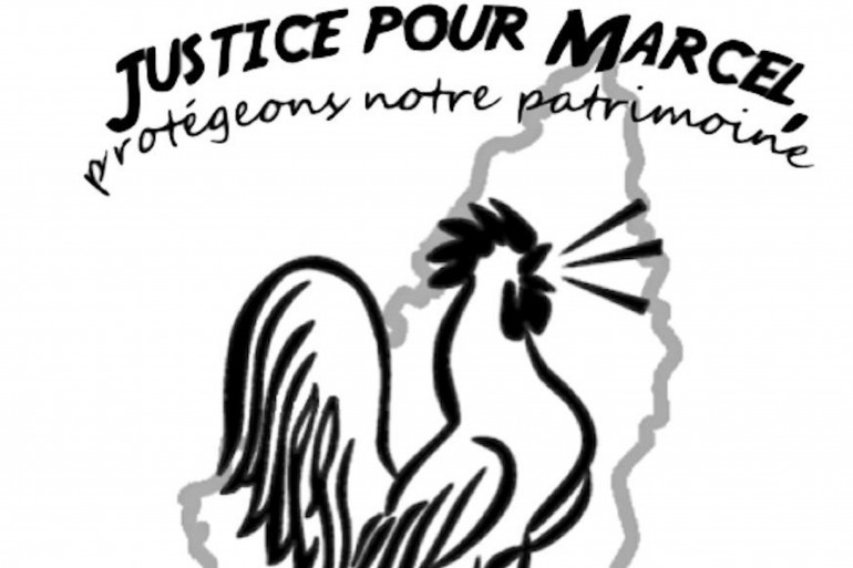 """Une pétition réclamant """"justice pour le coq Marcel"""" a récolté plus de 74.000 signatures à l'initiative d'un habitant du village de Vinzieux (Ardèche)"""