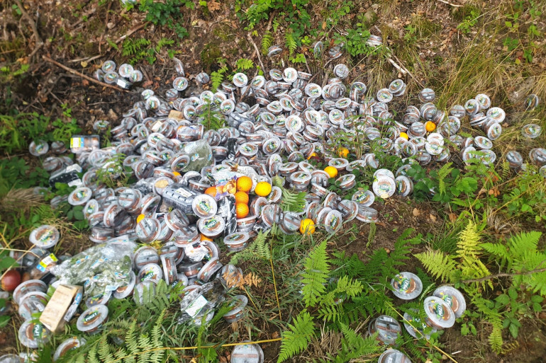 Des centaines d'invendus ont été déversées dans la forêt de Mormal.