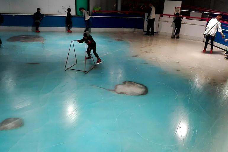 Au Japon, 5.000 poissons morts disposés sous la glace d'une patinoire