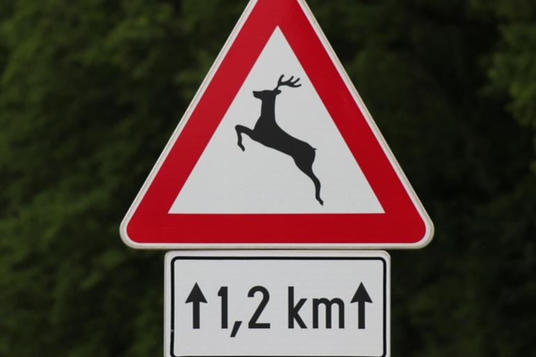 Un panneau de signalisation alertant du passage d'animaux sauvages (Image d'illustration).