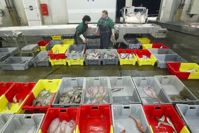Des mareyeurs participent à une vente de poissons à la criée de Concarneau, en 2003