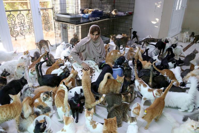 Orpheline depuis son plus jeune âge, cette ancienne fonctionnaire trouve que les chiens et les chats sont plus fidèles que les humains.