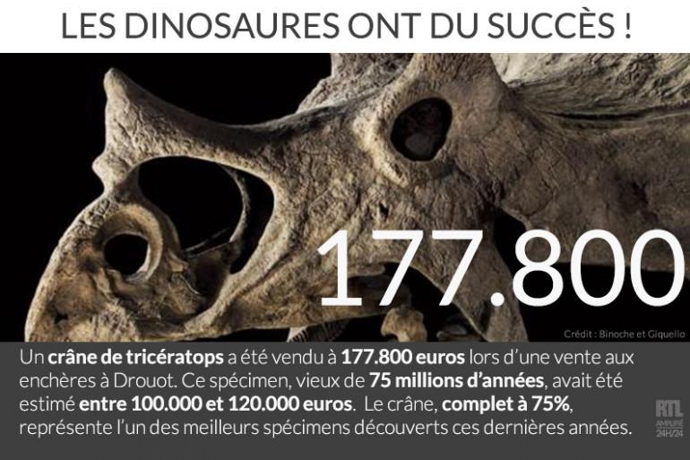 Un crâne de Tricératops vendu à 177.800 euros