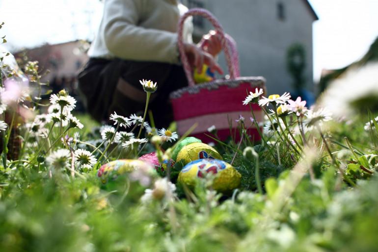 La chasse aux oeufs de Pâques