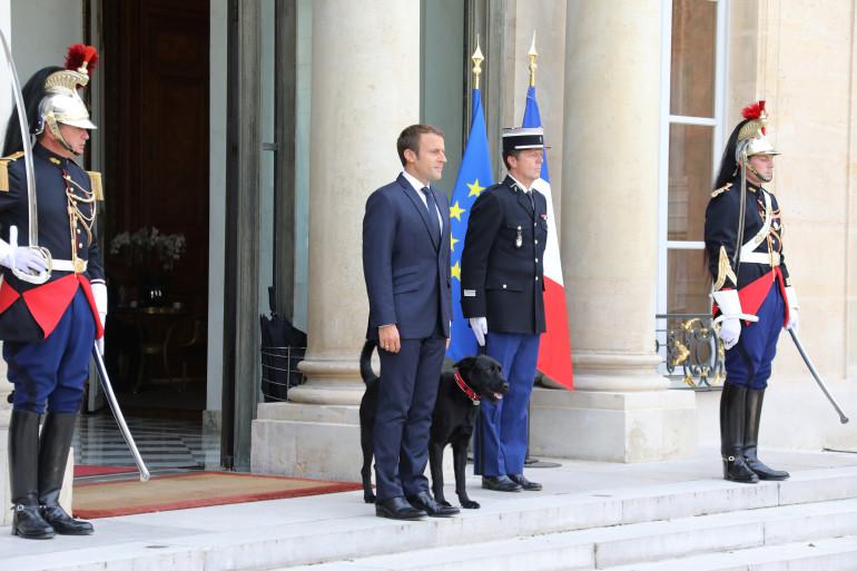 Emmanuel Macron et son labrador Nemo, le 28 août à l'Élysée.