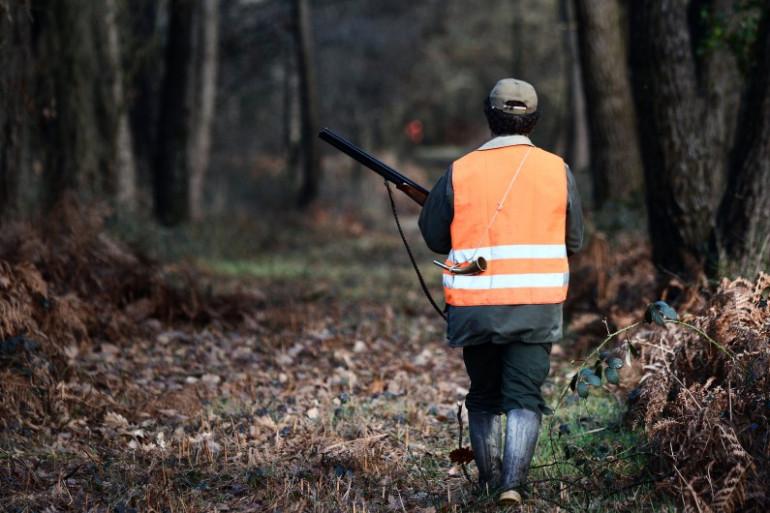 Un chasseur en forêt. (Illustration)