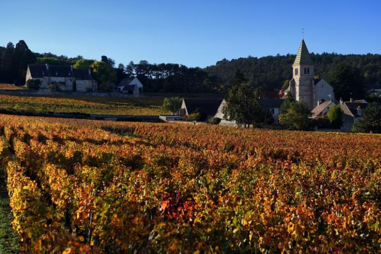 La production mondiale de vin est passée de 268,8 millions à 246,7 millions d'hectolitres selon la dernière estimation de l'OIV.