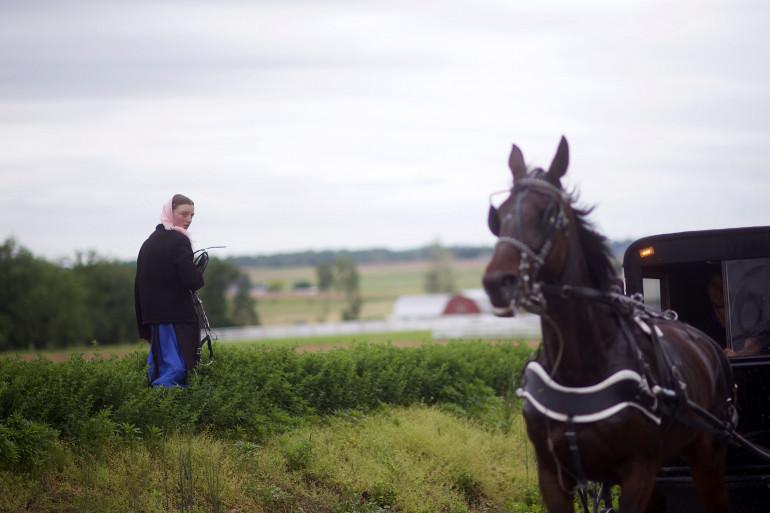 Une jeune fille Amish dans une plantation avant un rassemblement du Ku Klux Klan à Quarryville en Pennsylvanie le 14 mai 2017.