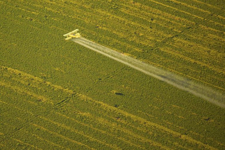 Un avion répand des pesticides sur un champ (illustration)