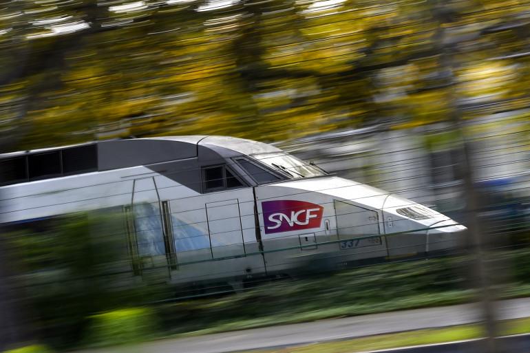 """Les ONG estiment que le train est """"essentiel"""" pour défendre le réchauffement climatique."""