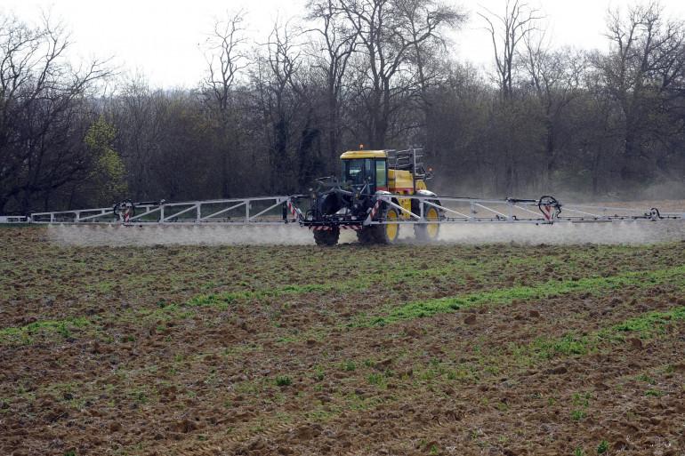 Un agriculteur pulvérise des pesticides dans son champ (illustration)