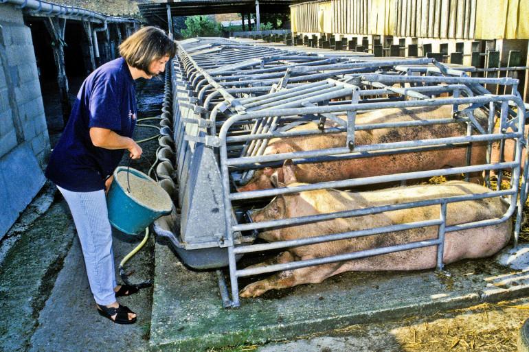 Marlène Schiappa travaille à une nouvelle mesure qui pourrait simplifier la vie des agricultrices en France