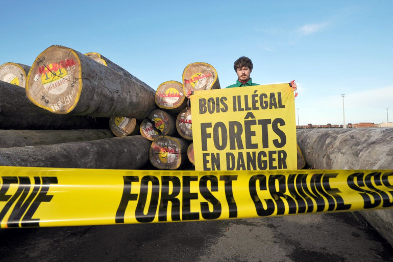 Un militant de Greepeace dénonce le trafic illégal de bois à La Rochelle, le 22 mai 2014