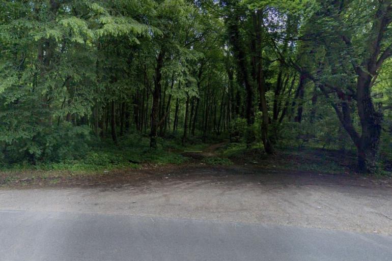 La forêt de Retz à Saint-Pierre-Aigle