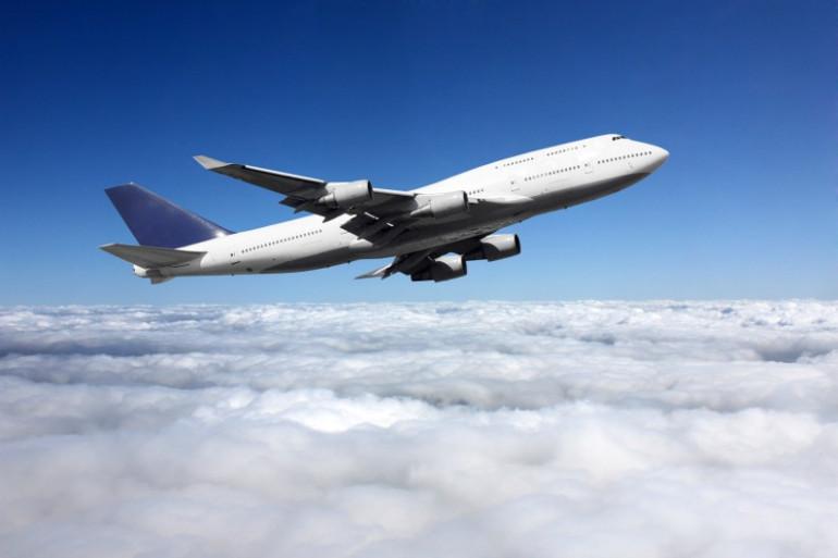 Une américaine adopte le fils de sa voisine d'avion