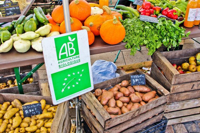 Des fruits et légumes bio (illustration)