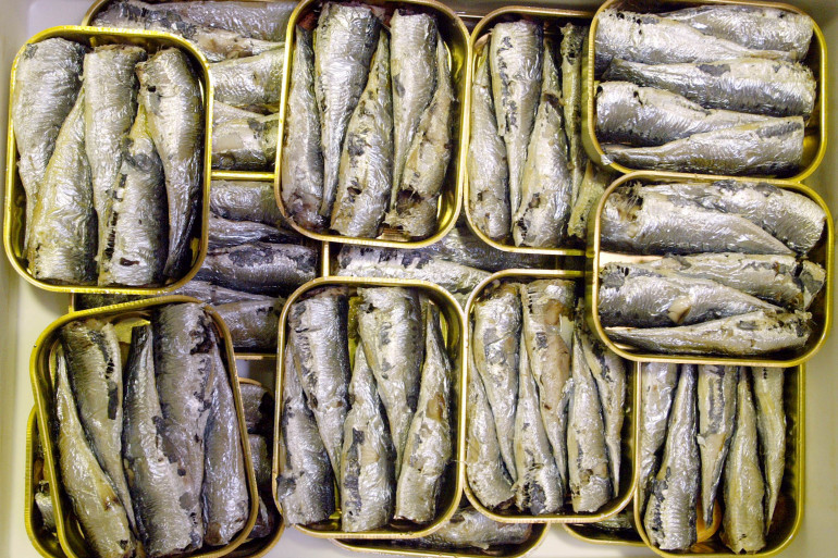Une boîte de sardines (Illustration)