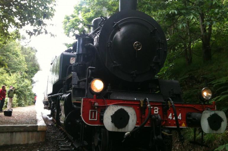 Une locomotive à vapeur centenaire (illustration)