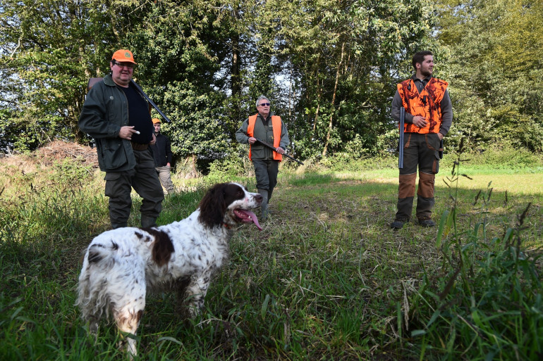 Alors que la saison de la chasse ouvre progressivement, les contours de la réforme de la chasse se dessinent.