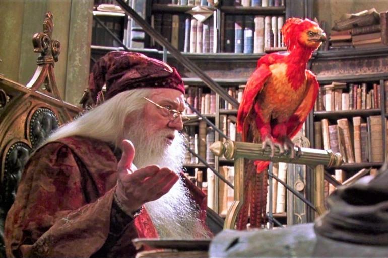 Dumbledore et Fumseck son phœnix