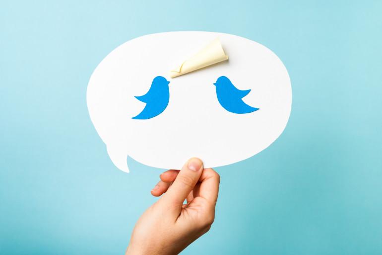 Le réseau social Twitter (illustration)